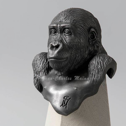 Gorille de JC Maina 730188856381_n.jpg