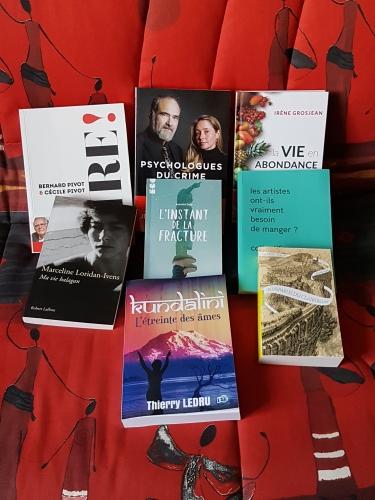 Livres Noel 2018.jpg