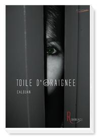 livre_toile-daraignc3a9e.jpg